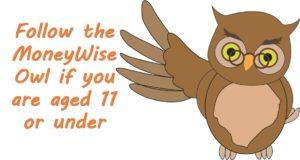 11 and under Owl
